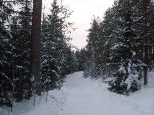 pasternak-first-snow